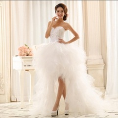 Swan lake wedding dress