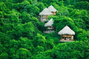 Eco cabins in Tayrona park