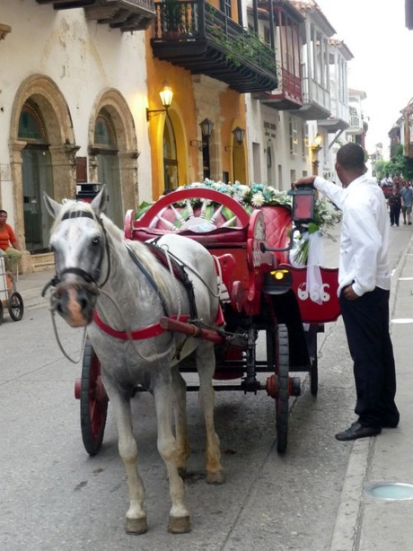 Horse carts wedding colombia