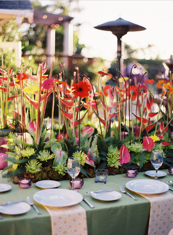 Pick tropical flowers for wedding decoration