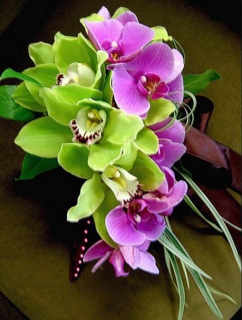 Wedding Flower Arrangements Orchid : Pick tropical flowers for wedding decoration